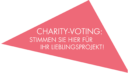 config_overlay_immoball_stoerer_webseite_charityvoting_1.png