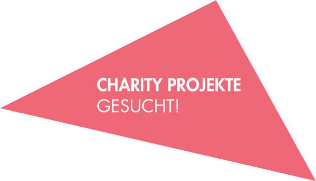config_overlay_stoerer_charity_projekt_gesucht.png